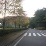 軽井沢紅葉情報「風越公園」の状況