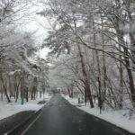 軽井沢は大雪警報