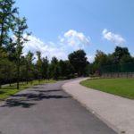 初秋の湯川ふるさと公園
